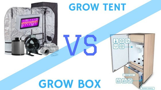 grow tent vs grow box