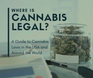 If you want to know, where is cannabis legal in the USA and elsewhere around the world, look no farther. This article shares the latest cannabis laws by state in the USA and the countries where cannabis is legal and decriminalized. We answer your frequently asked questions about marijuana legalization.