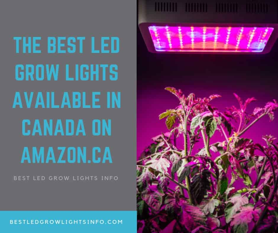 the best led grow lights available in canada amazon.ca