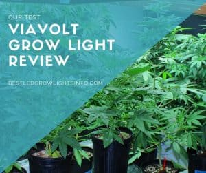 Viavolt grow light review