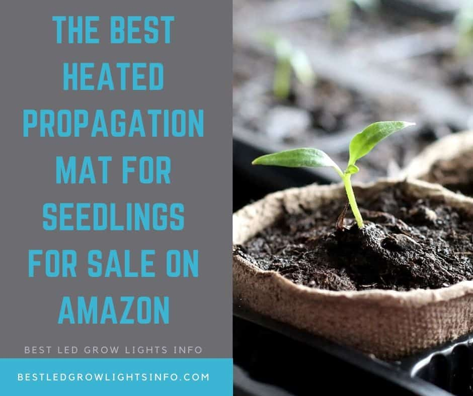 The Best Heated Propagation Mat for Seedlings for sale on Amazon
