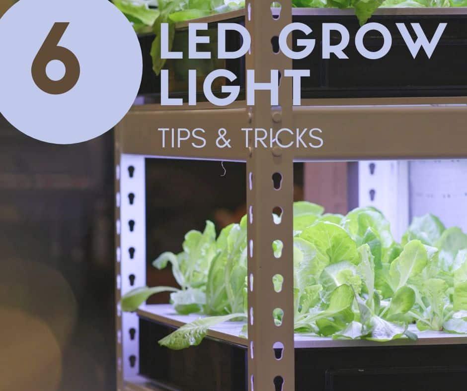 led grow light tips