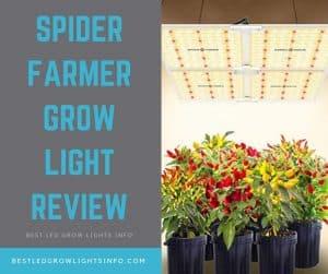 Spider Farmer SF-4000 LED Grow Light Review